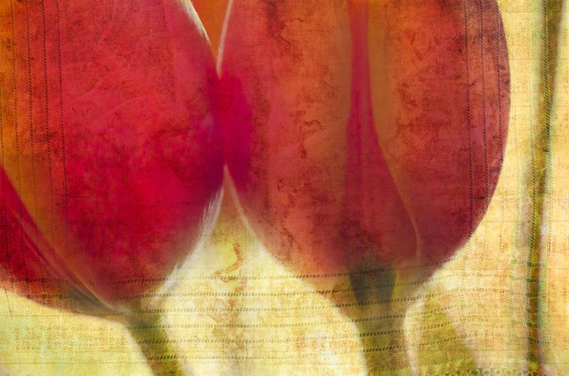 Digital collage, 22 layers, © 2017 Liz Ruest
